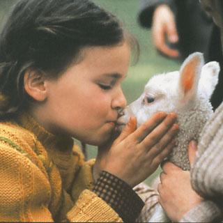 Program image Wir Kinder aus Bullerbü