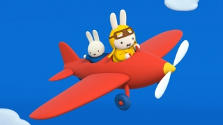 Program image Miffy